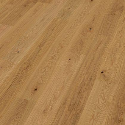 Dub sukatý